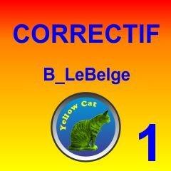 Screenshot for YellowCat_B_LeBelge-Correctif1.rwp