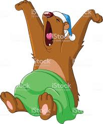 ours se réveille.jpg